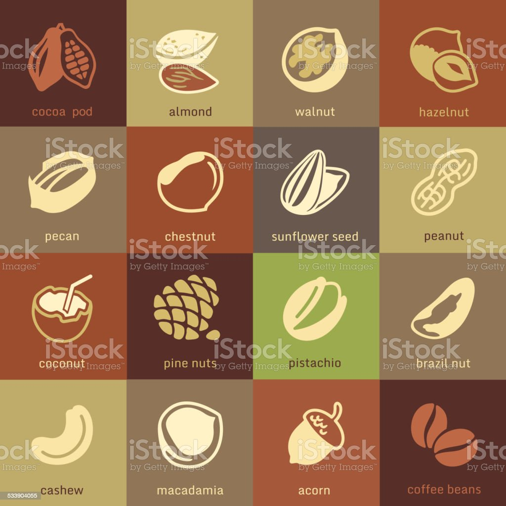 Web icons collection - nuts, beans and seed vector art illustration