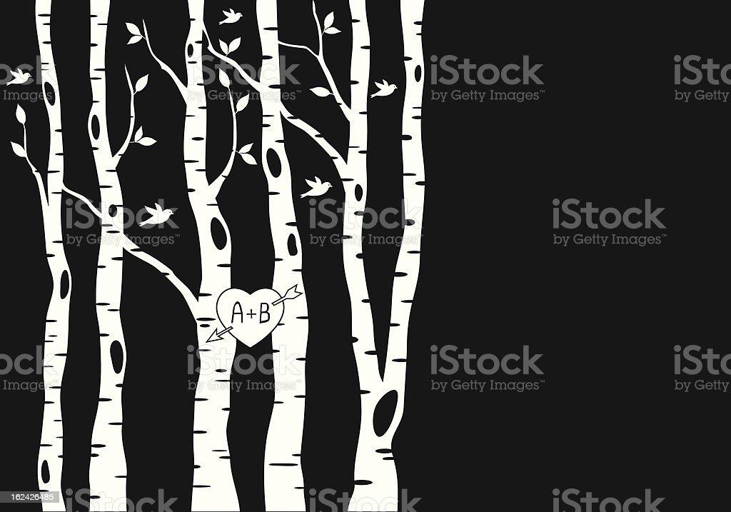 wedding invitation with birch trees, vector vector art illustration