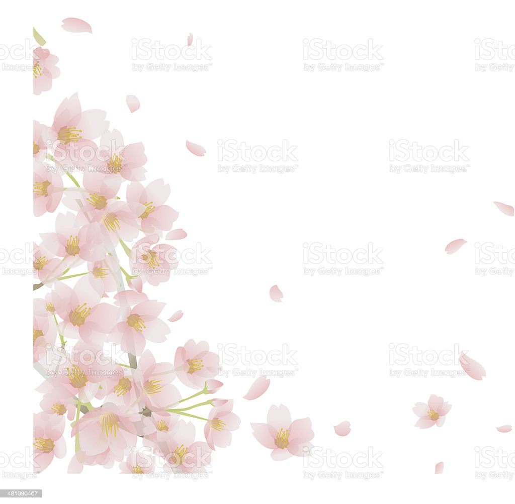 しだれ桜 vector art illustration