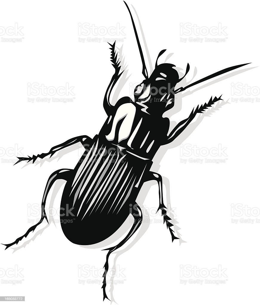 Weevil royalty-free stock vector art