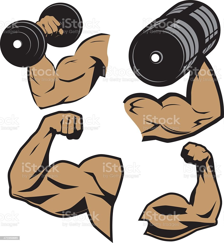 Weightlifter Arms vector art illustration
