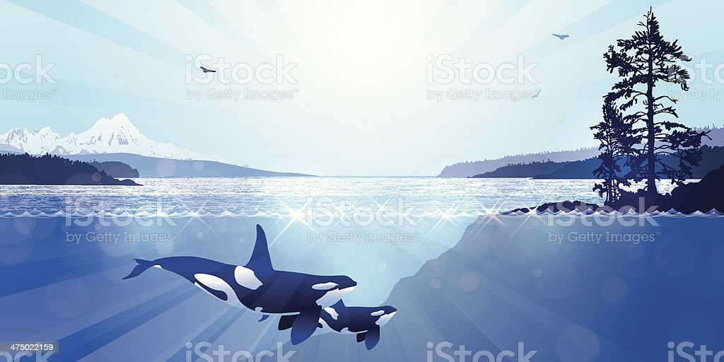West Coast Landscape vector art illustration