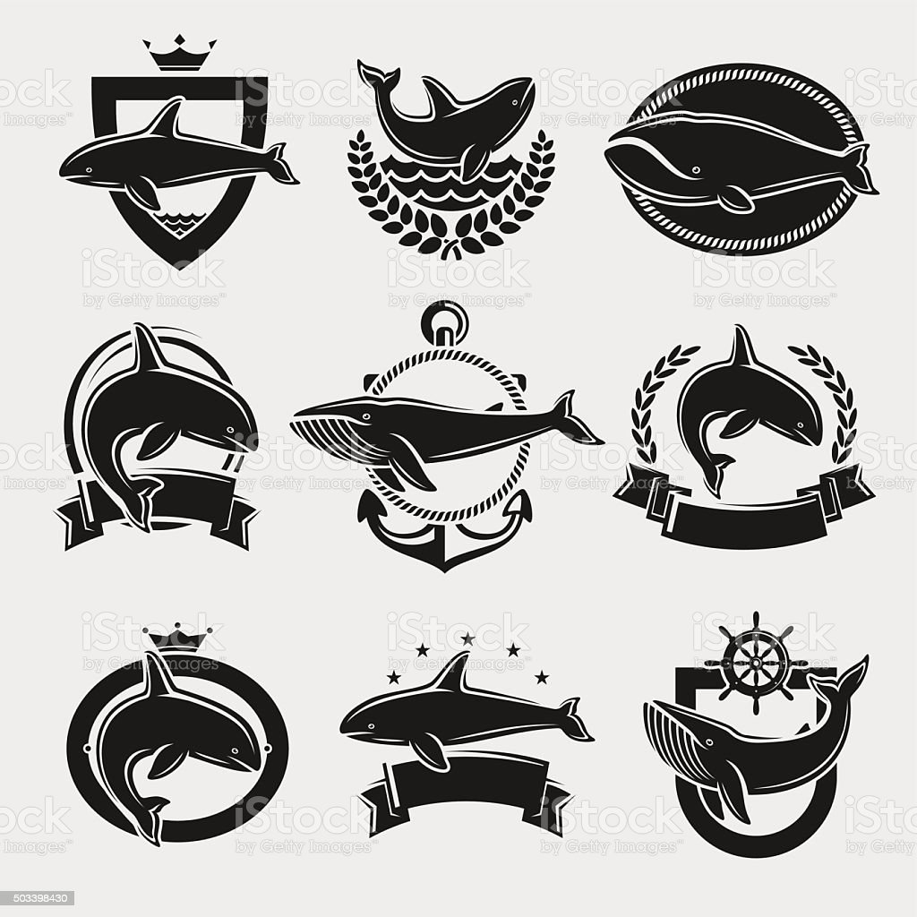 Whale label and icons set. Vector vector art illustration