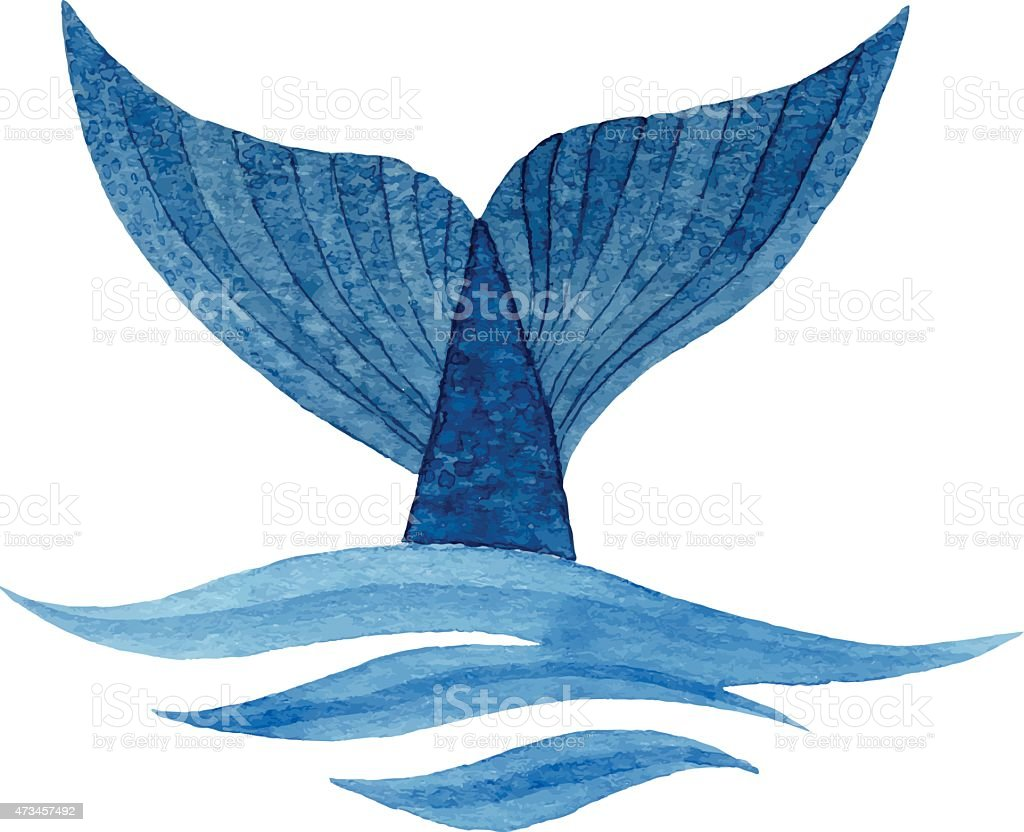 Whale tail vector art illustration