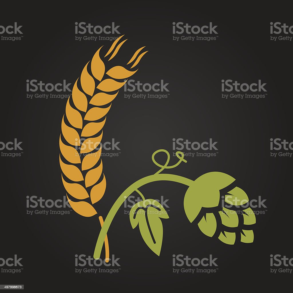 Wheat and beer flower vector art illustration