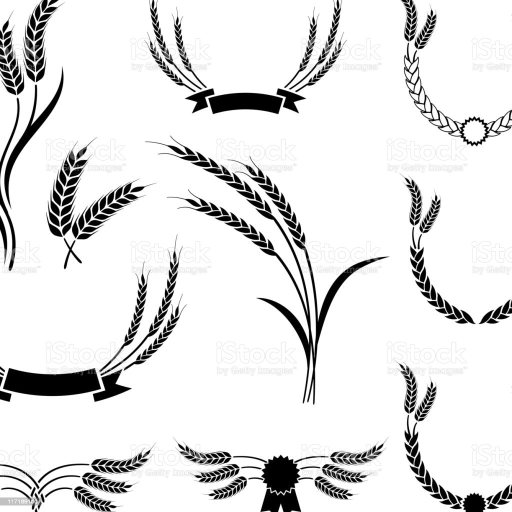 Wheat black & white royalty free vector icon set. vector art illustration