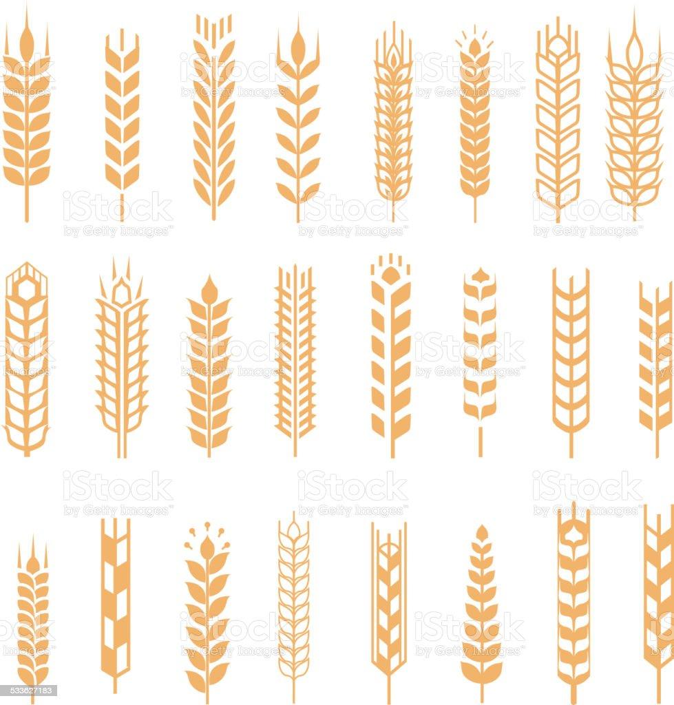 wheat ear icon set vector art illustration