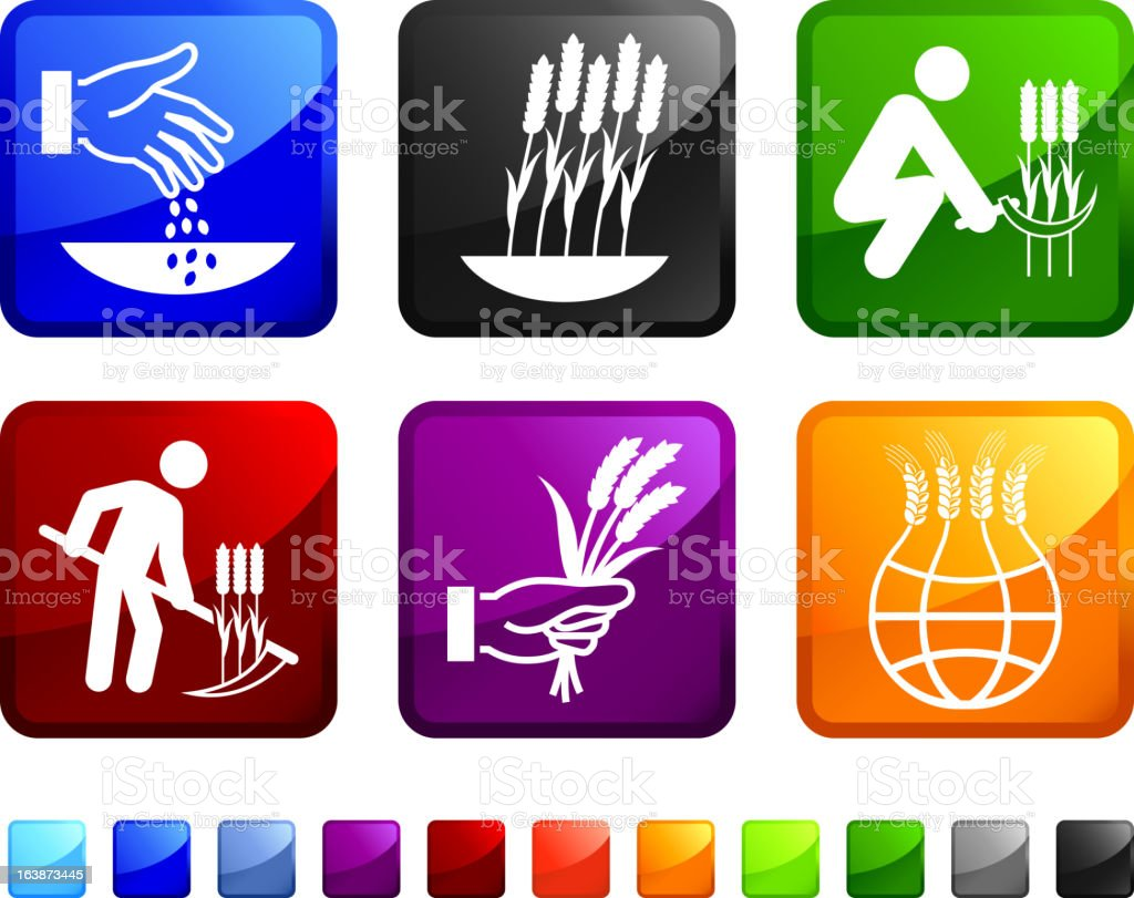 Wheat Farming and Gardening royalty free vector icon set stickers royalty-free stock vector art