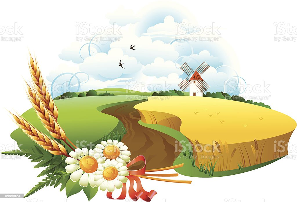 Wheat field and sky royalty-free stock vector art