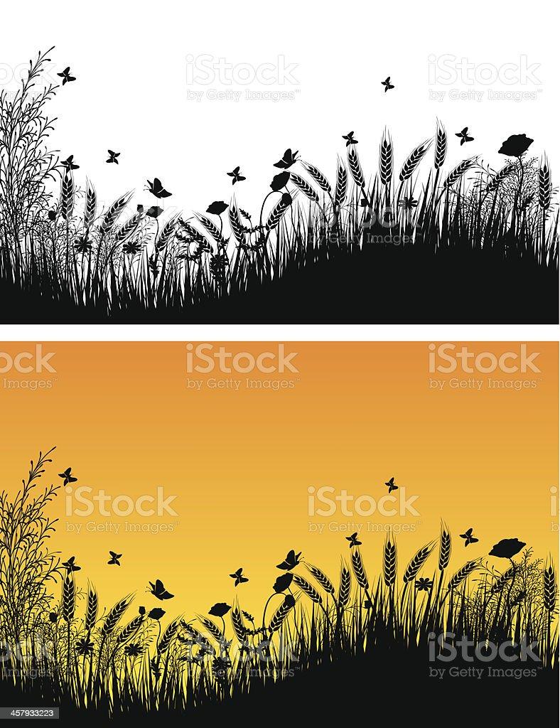 Wheat Field vector art illustration