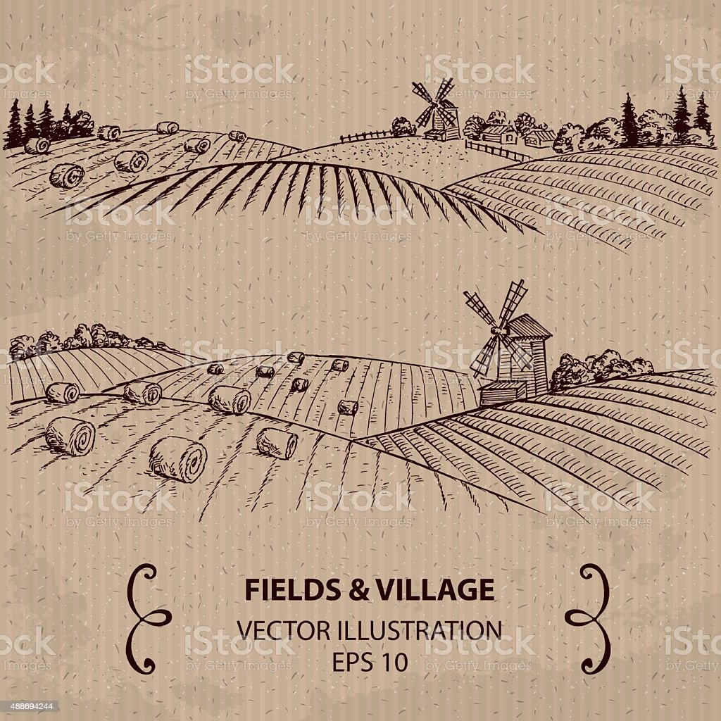 Wheat Fields with Haystacks and Windmill. vector art illustration