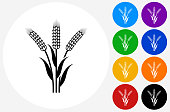 Wheat Icon on Flat Color Circle Buttons