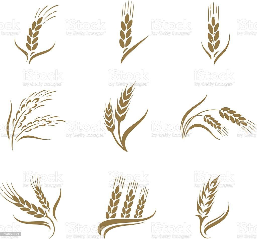 Wheat icon set vector art illustration