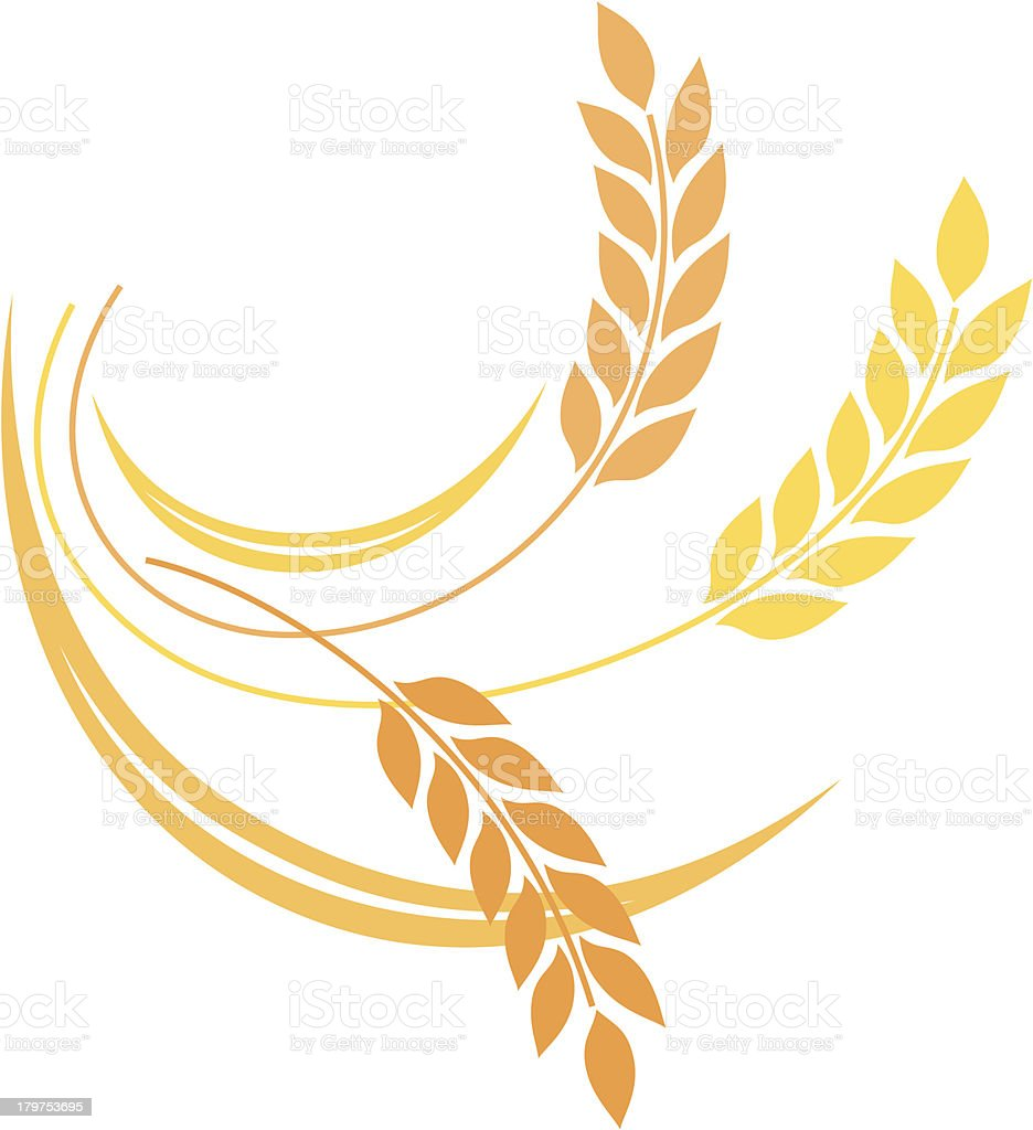 Wheat icon vector art illustration