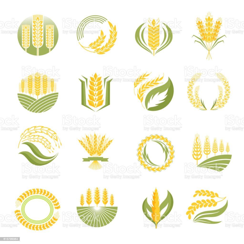 Wheat icon vector set. vector art illustration