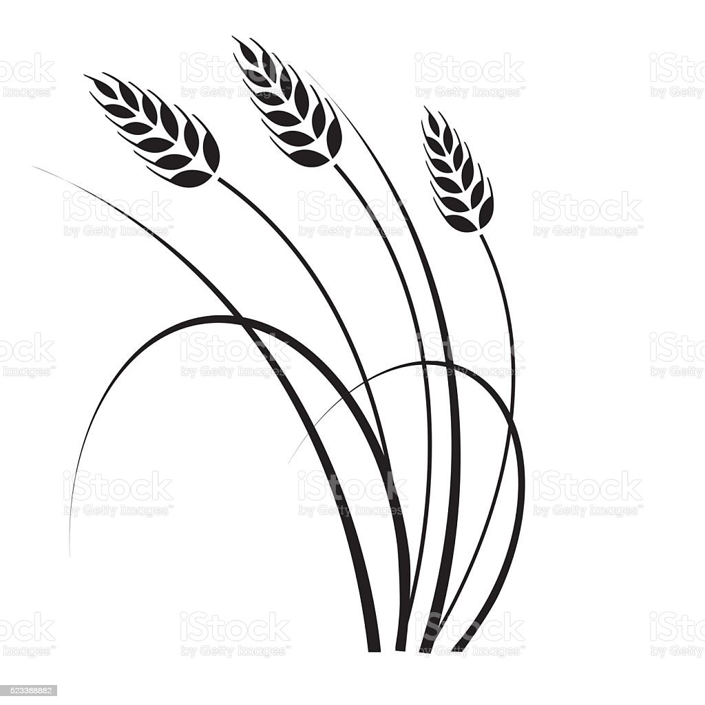 Wheat in the wind vector art illustration
