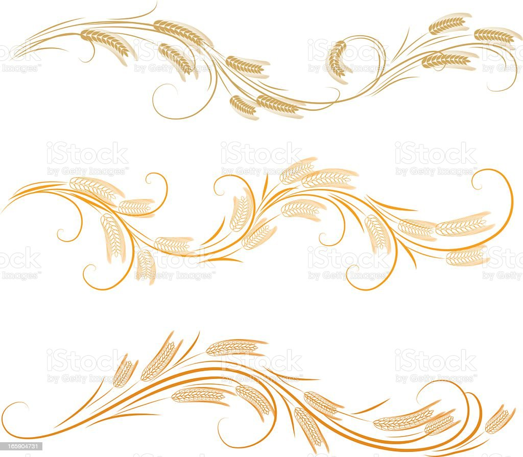 Wheat ornaments royalty-free stock vector art
