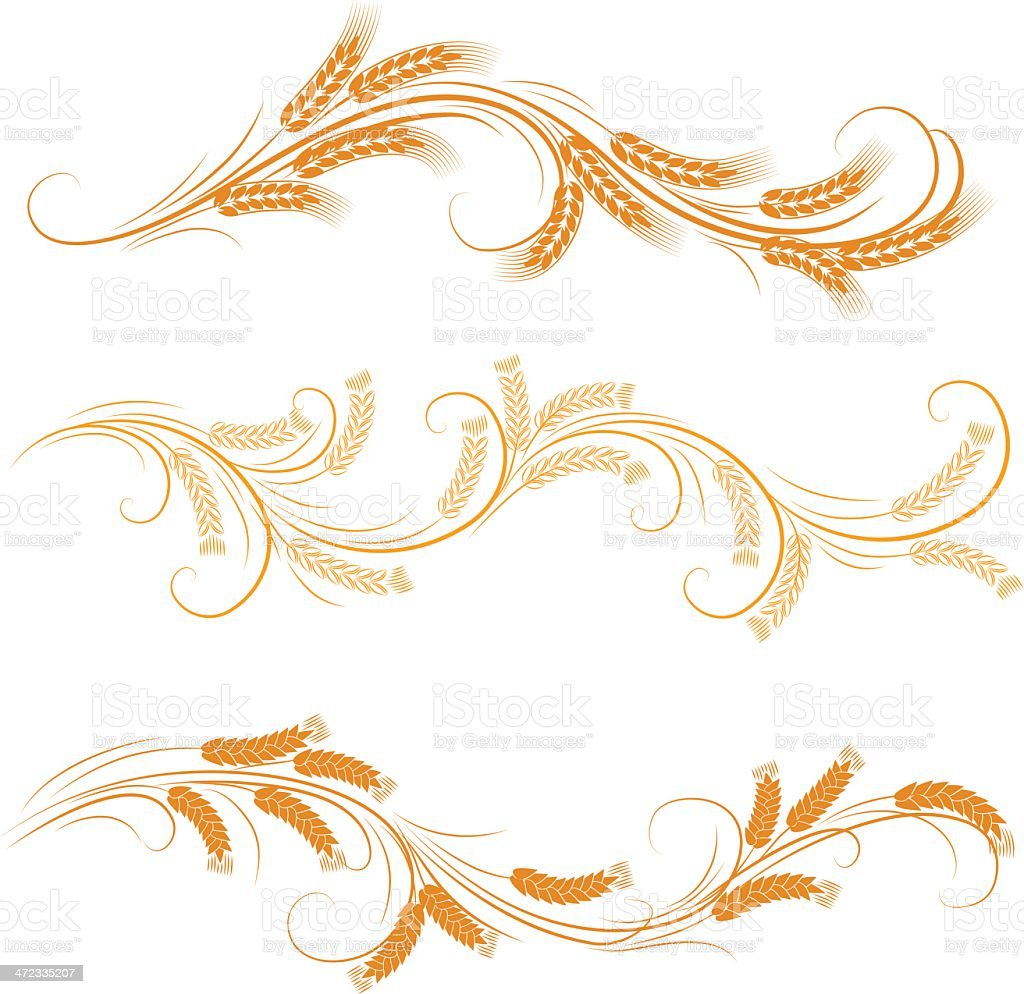wheat ornaments vector art illustration