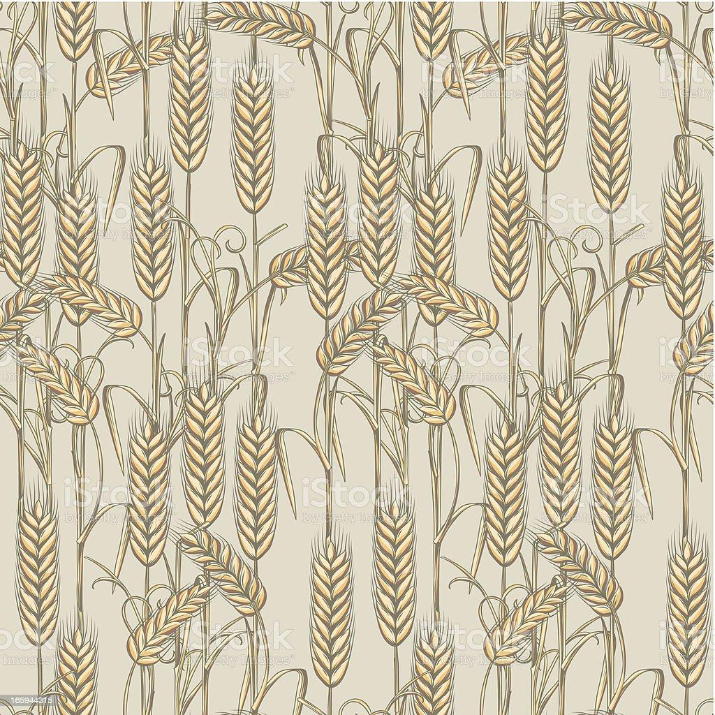Wheat seamless pattern vector art illustration