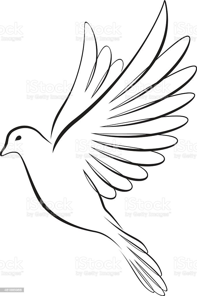 Dove vector art illustration