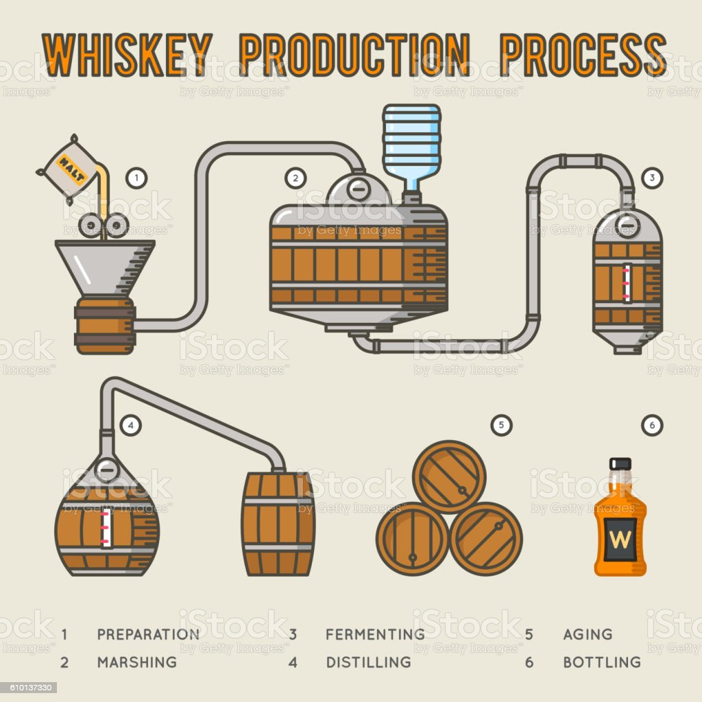 Whiskey production process. Distillation and aging whisky infographics vector art illustration