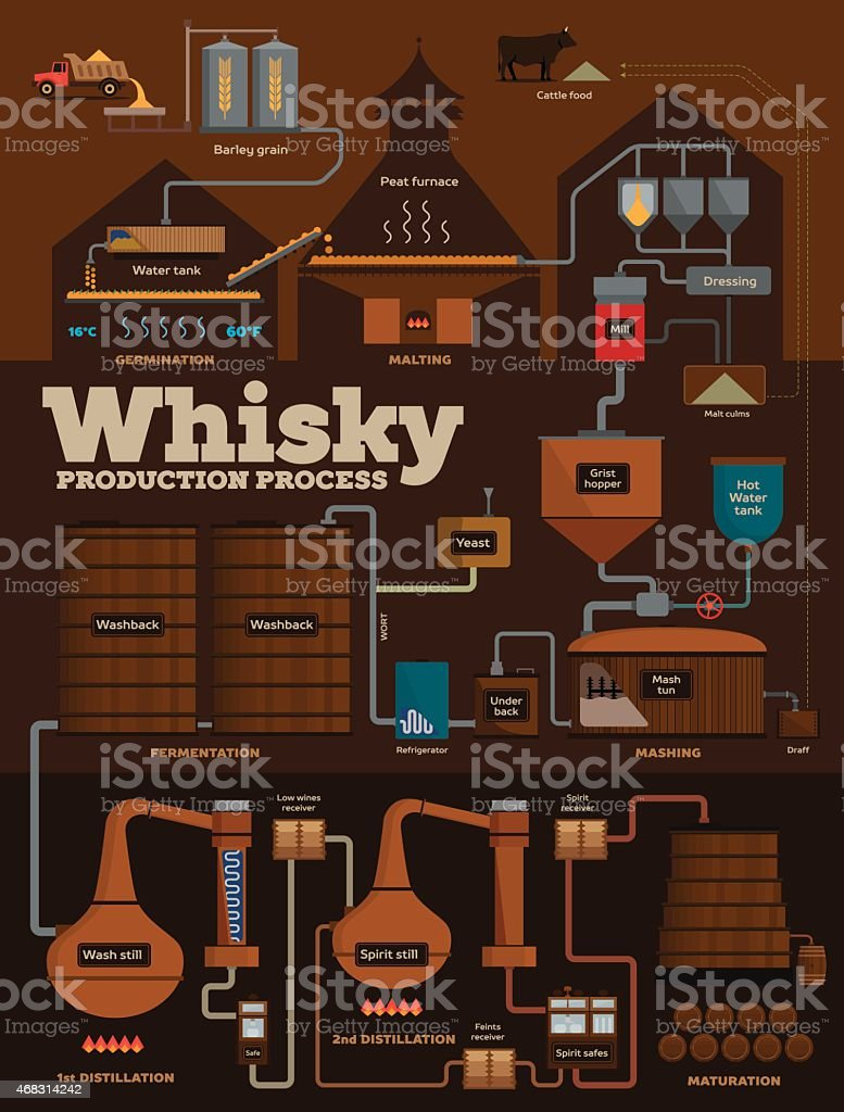 Whisky distillery production process infographics vector art illustration