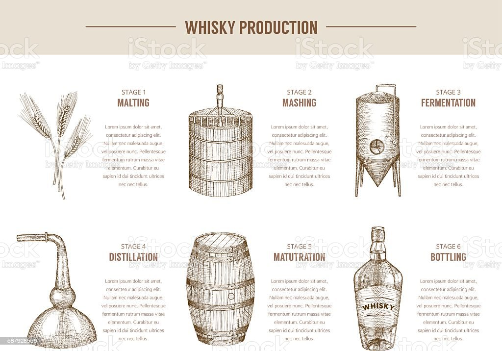 Whisky production. vector art illustration