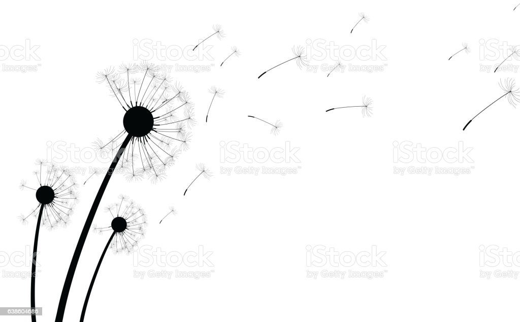 White background with dandelions. vector art illustration