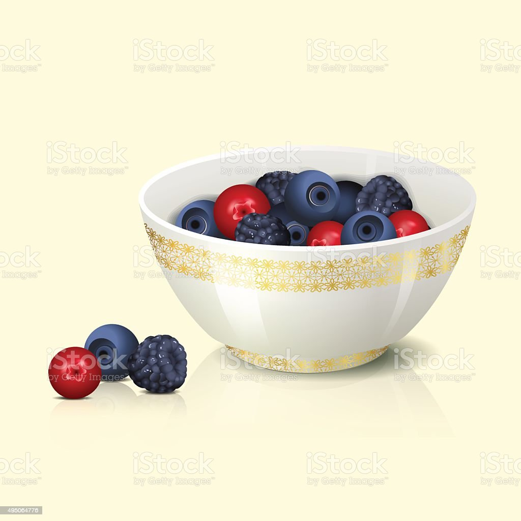 white bowl with cranberries shadow and reflection vector art illustration