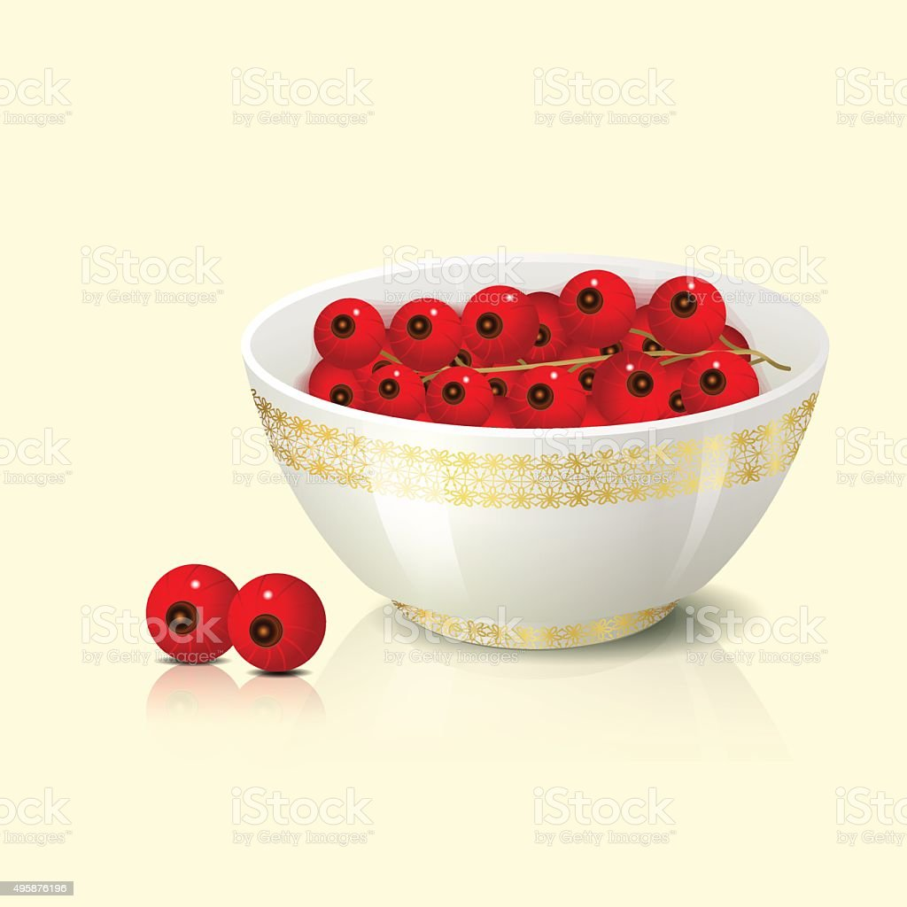 white bowl with red currant shadow vector art illustration