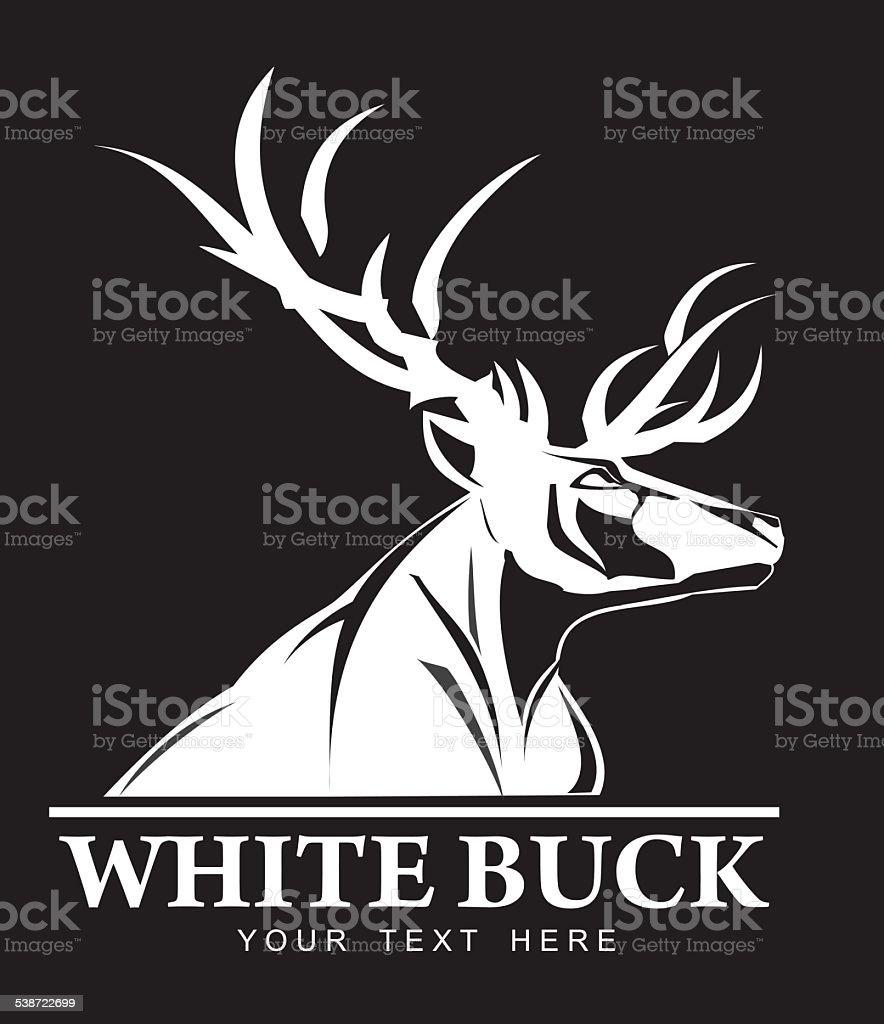 White Buck vector art illustration