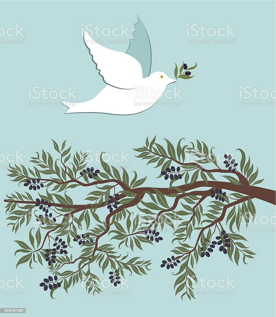 White dove flying over olive branch vector art illustration