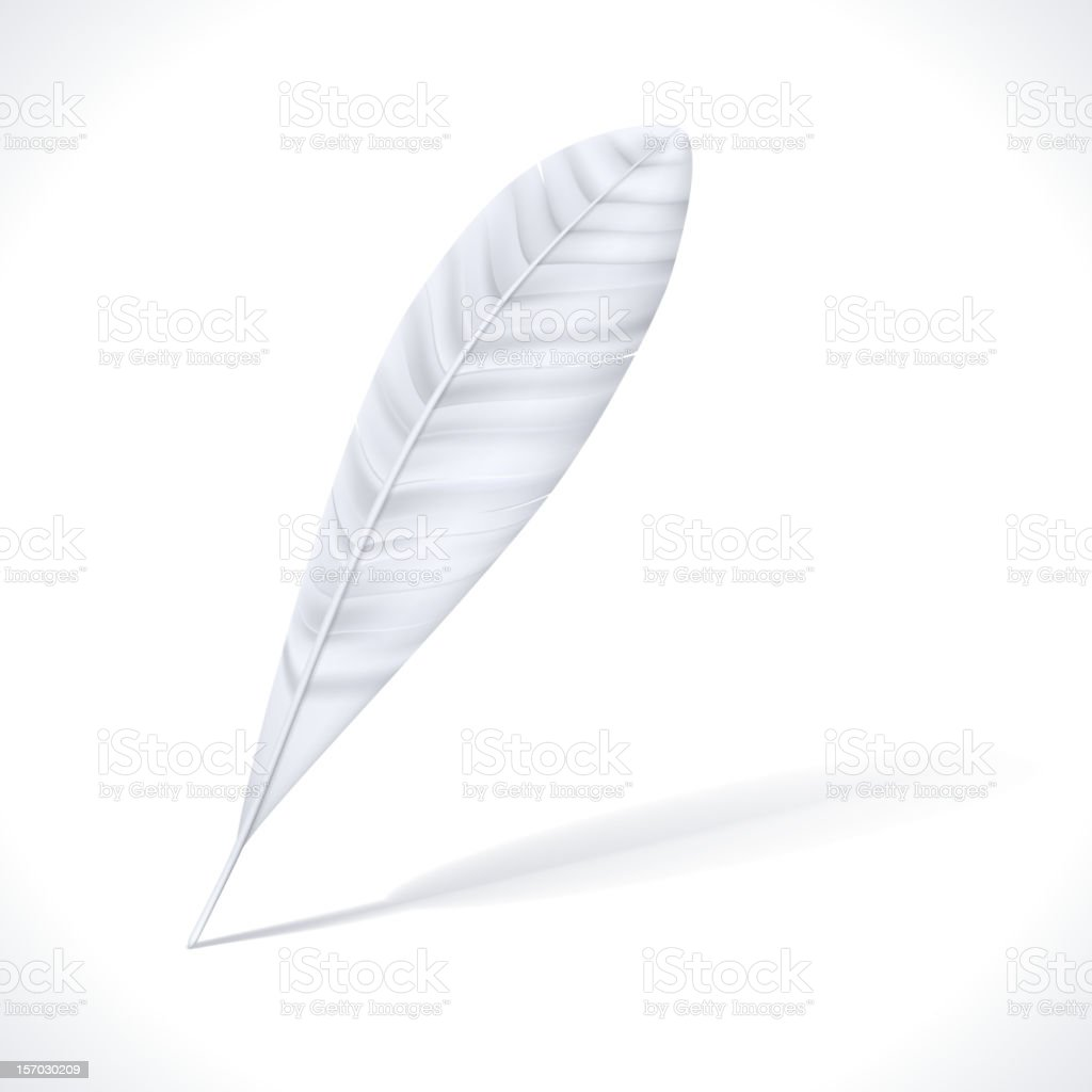 White Feather royalty-free stock vector art