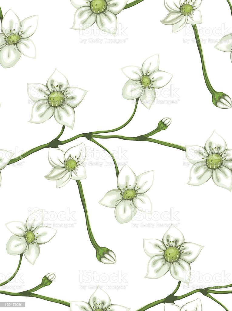 White Flowers on Twig Seamless Pattern royalty-free stock vector art