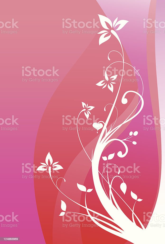 White Flowers Vector Floral Ornament Red Background vector art illustration