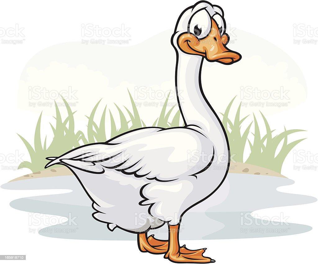 White Goose vector art illustration
