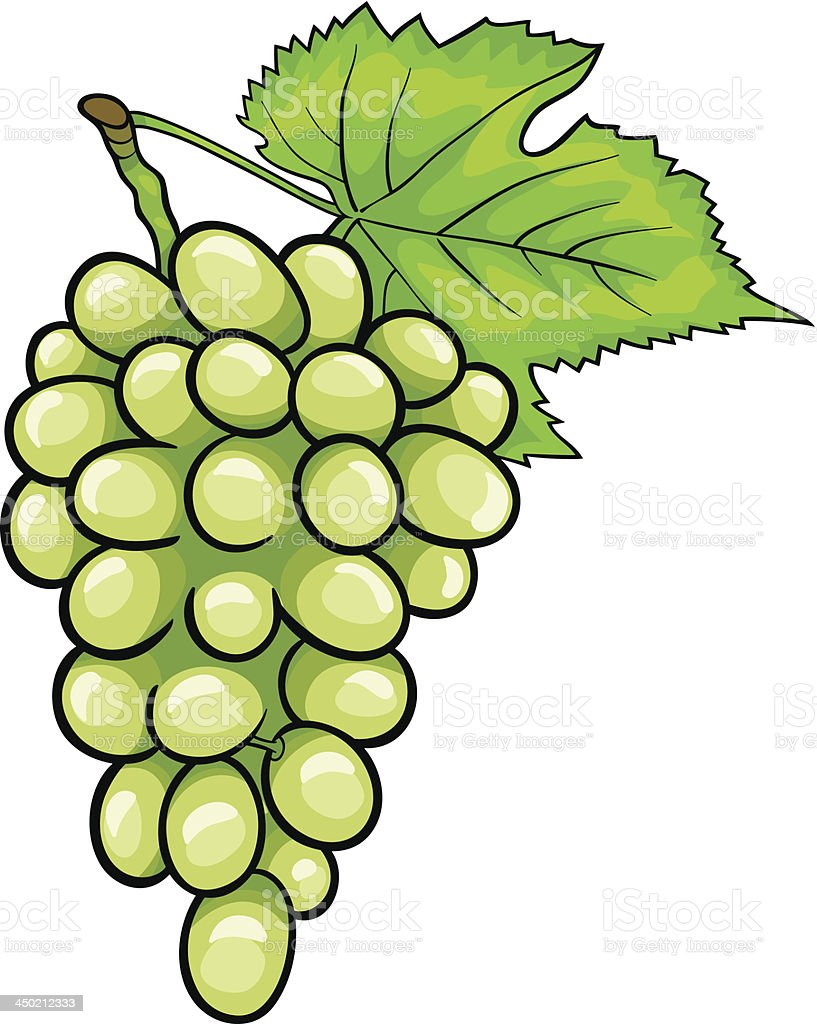 white grapes fruit cartoon illustration vector art illustration