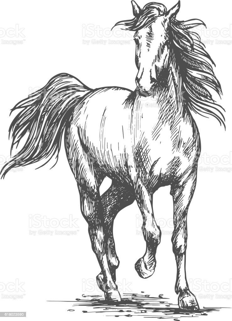 White horse freely running portrait vector art illustration