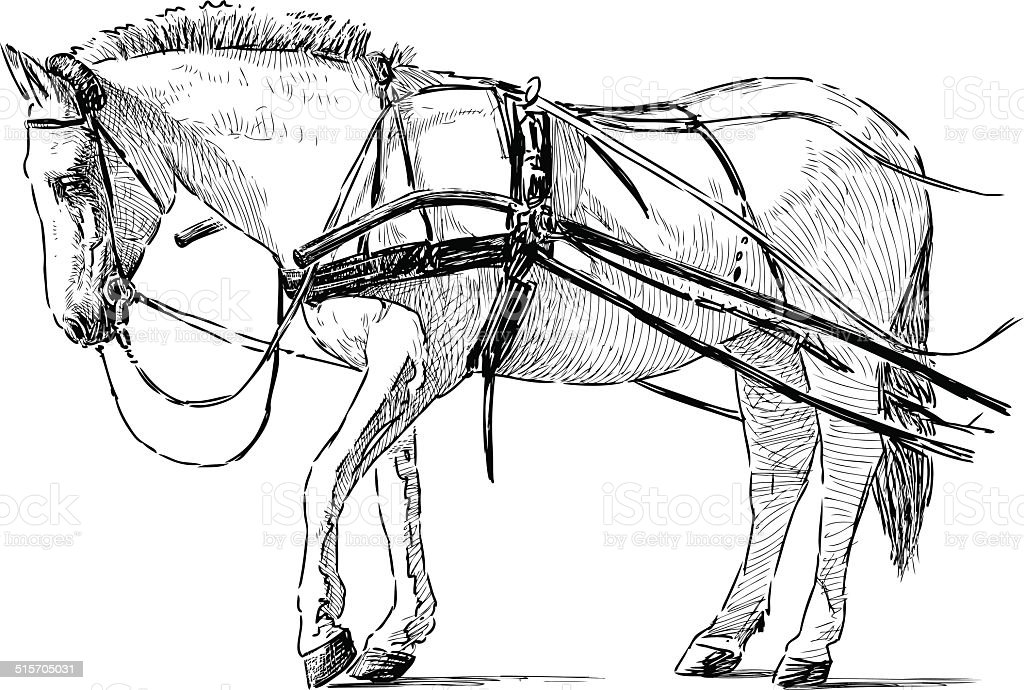 white horse in the harness vector art illustration