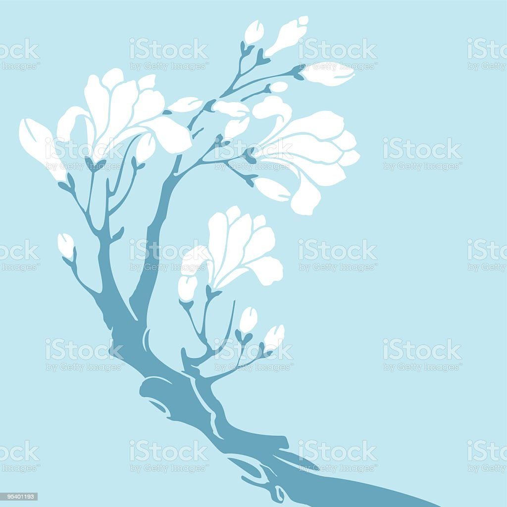 White Magnolia royalty-free stock vector art