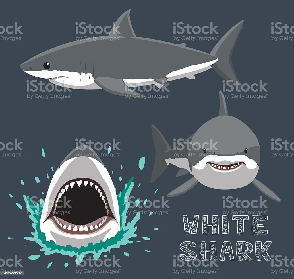 White Shark Cartoon Vector Illustration vector art illustration