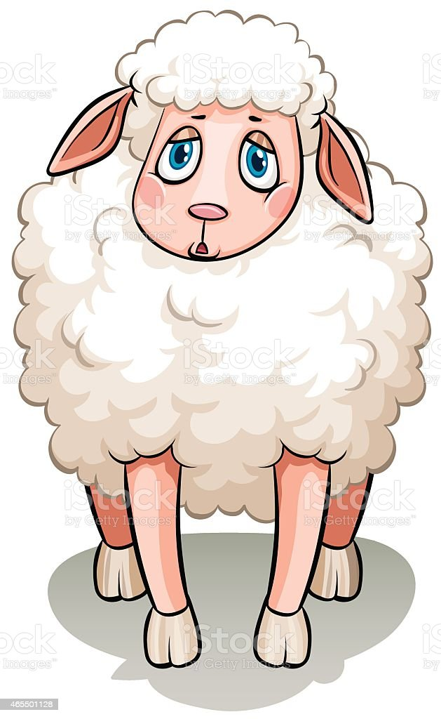 White sheep vector art illustration