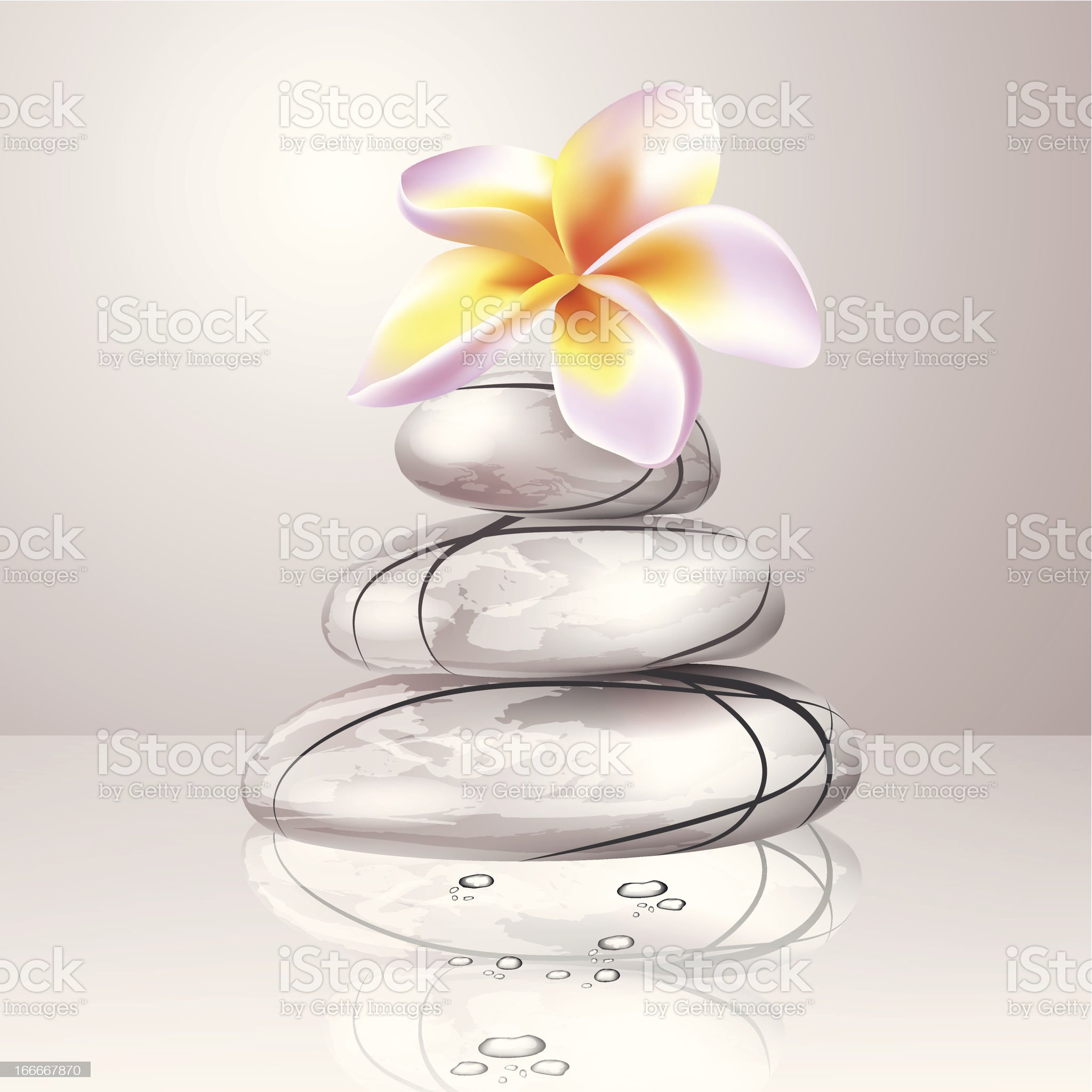 White spa stones with frangipani flower royalty-free stock vector art