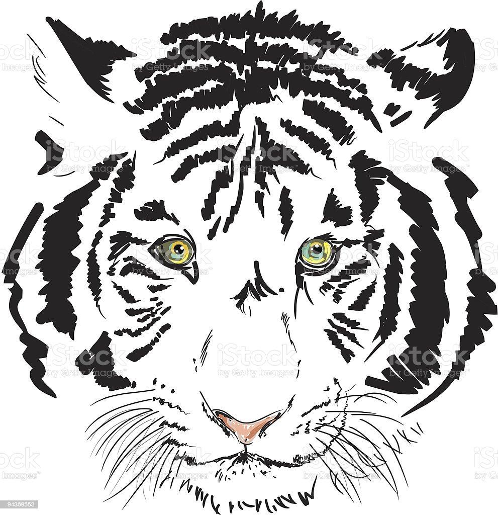 white tiger head royalty-free stock vector art