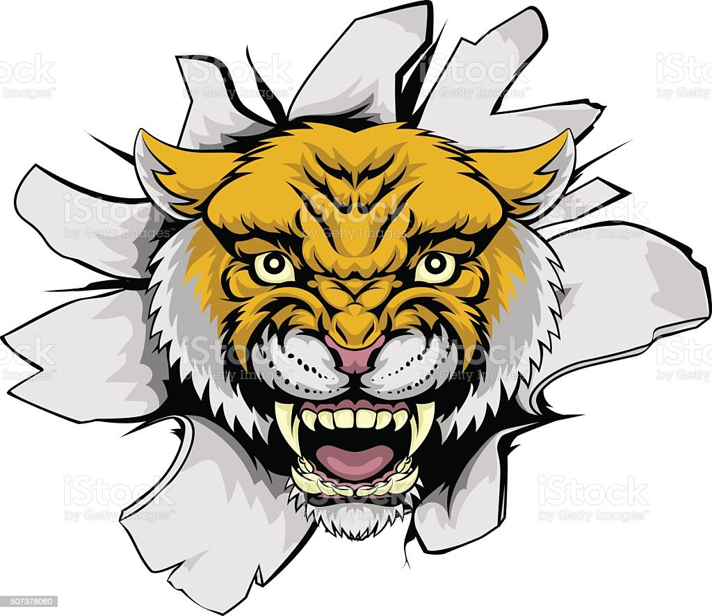 Wilcat Cougar Ripping Out vector art illustration