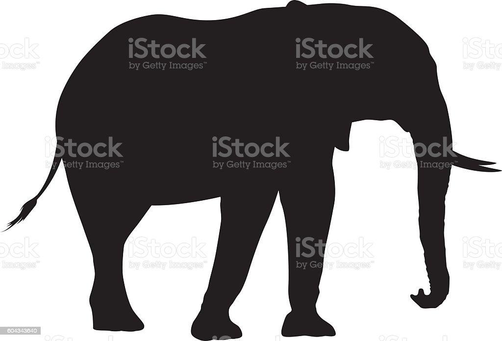 Wild African Elephant Silhouette vector art illustration