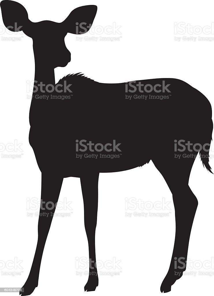 Wild African Nyala Deer Silhouette vector art illustration
