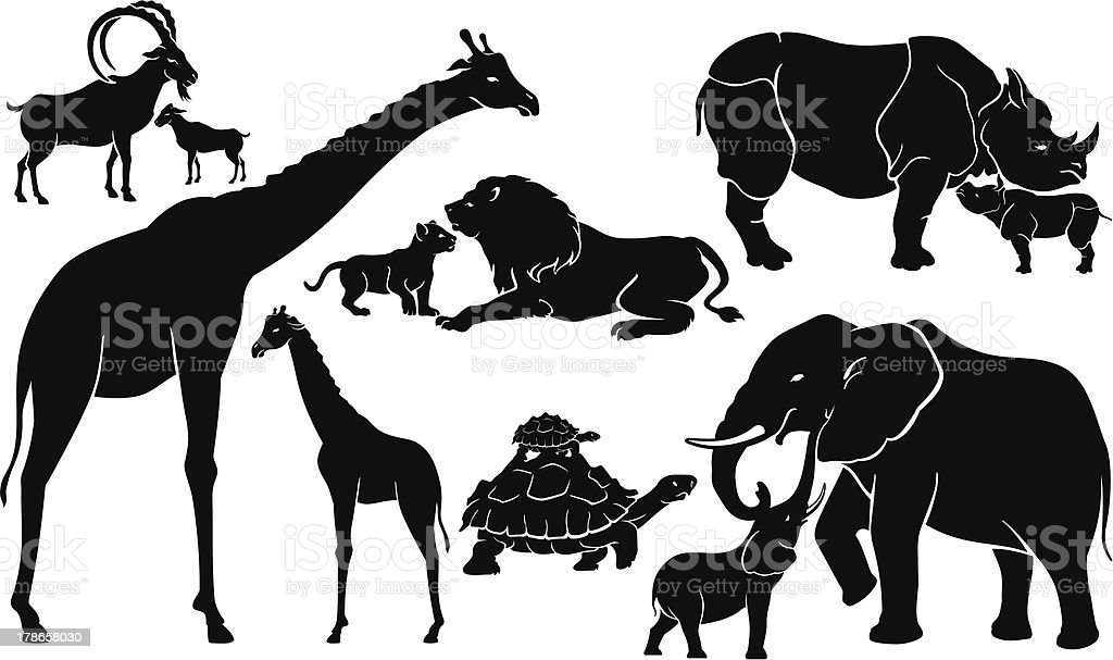 Wild Animals and offspring vector art illustration