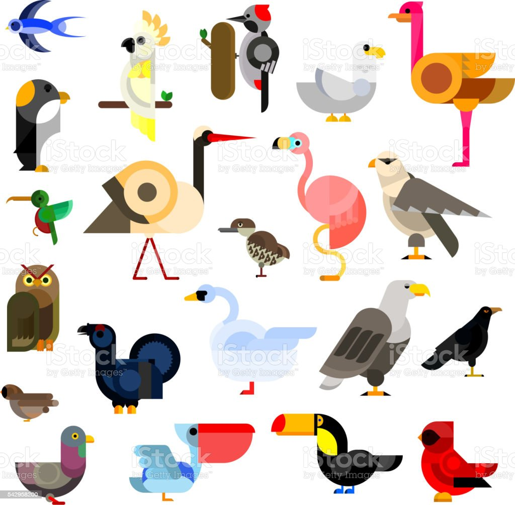 Wild, aquatic, tropical and urban birds flat icons vector art illustration