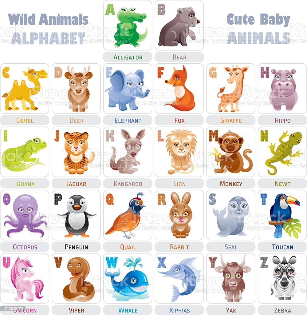 Wild baby animals alphabet vector art illustration